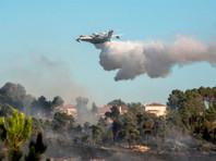 Самолеты МЧС РФ помогают тушить лесные пожары в Израиле