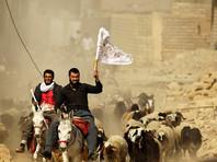 """Источники: лидер """"Исламского государства"""" все еще находится в Мосуле"""