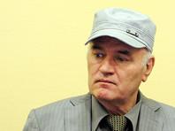Прокурор в Гааге потребовал пожизненного заключения для экс-лидера боснийских сербов Ратко Младича