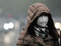 Китайская полиция пресекла акцию протеста против грязного воздуха, во время которой на скульптуры надели тканевые маски