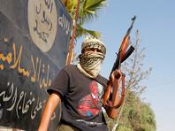 """Оппозиция Сирии настаивает на участии в объявленном Путиным перемирии местной """"Аль-Каиды"""""""