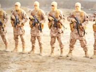 Пресса сообщила о сожжении заживо двух турецких военных боевиками ИГ в Сирии