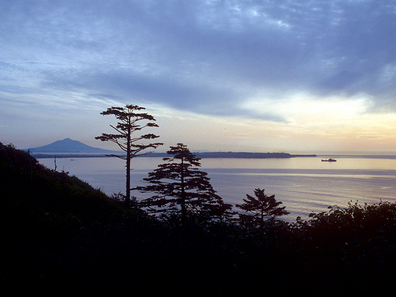 На Курилах может появиться американская база в случае передачи островов Японии