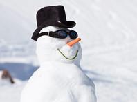 В Германии снеговик, установленный на железнодорожных путях, повредил грузовой поезд