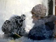 В Европе из-за аномальных морозов умерли более 20 человек
