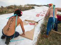 Активистка FEMEN сообщила о распаде движения, основательница это опровергает