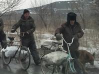 Киев принципиально исключил импорт электроэнергии из России