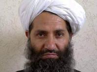 """Глава """"Талибана"""" в спецобращении призвал жителей Афганистана сажать больше деревьев"""
