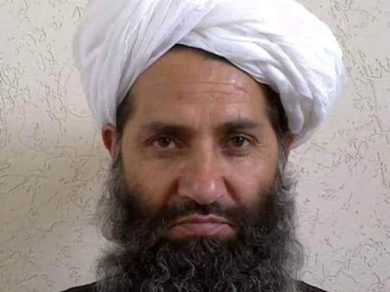 """Глава """"Талибана"""" (запрещено в РФ) в специальном обращении призвал жителей Афганистана сажать больше деревьев"""