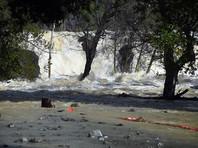 В результате того, что река Койот-Крик вышла из берегов 21 февраля, оказались затопленными несколько районов города