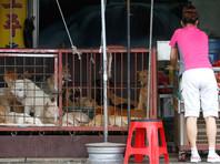 В Южной Корее решили закрыть крупнейший в стране рынок собачьего мяса в преддверии Олимпиады