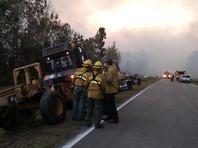 Решив сжечь ненужные книги, американец из Флориды устроил один из крупнейших пожаров в истории штата