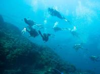 Во время поисков пропавшей в Таиланде россиянки в море нашли человеческие кости и зеленую футболку