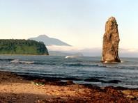 Япония предложит России развивать на Курилах туризм, выращивать морских ежей и ловить рыбу