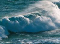 Волны размером с дом в Тасмановом море разбили яхту, на которой влюбленная пара путешествовала семь лет