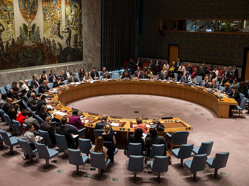 Три страны внесли в Совбез ООН проект резолюции в связи с химической атакой в Идлибе