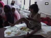 """В Индии найдена девочка-""""маугли"""", которую воспитывала стая обезьян"""