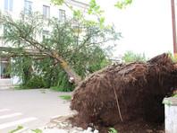 Ураган в Грузии снес учителя с крыши дома, он погиб