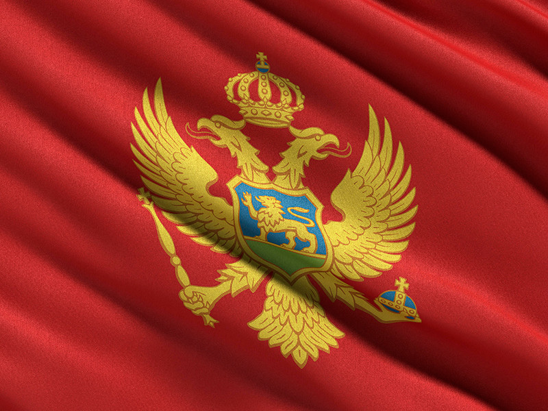 МИД Черногории вручил послу РФ ноту протеста из-за задержания депутата в Москве