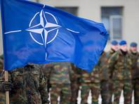 СМИ узнали о попытках НАТО подстроить грядущий саммит под невнимательного и переменчивого Трампа