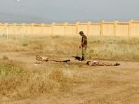 ИГ* в Ираке атаковало базу с американскими военными