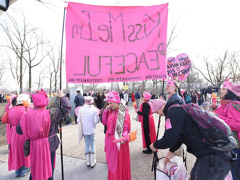 В США трем активисткам женского антивоенного движения Code Pink грозит до года тюрьмы