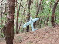 В Южной Корее обнаружен беспилотник КНДР, который исследовал позиции ПРО США