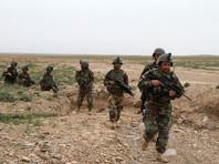 Пентагон потратил 94 миллиона долларов на неподходящую форму для полиции Афганистана