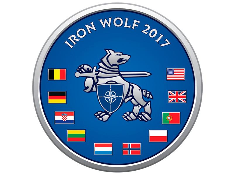 """В Литве стартовали учения НАТО """"Железный волк-2017"""" с участием более 5 тыс. солдат из девяти стран"""