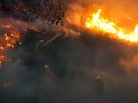 В Португалии во время страшного лесного пожара 12 человек спаслись в баке для воды