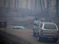 В Португалии объявлен трехдневный траур. Названа причина внезапного пожара