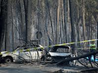 По данным СМИ, около половины погибших задохнулись или горели в собственных автомобилях, будучи заблокированными на трассах или пытаясь пробиться через стену огня