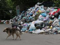 Городские власти Львова обратились к правительству Украины с просьбой объявить чрезвычайную экологическую ситуацию в связи с невозможностью вывоза мусора