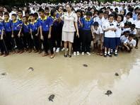 В Таиланде в честь дня рождения короля отпустили на волю 1066 черепашек