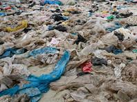 В Кении вступил в силу запрет на полиэтиленовые пакеты