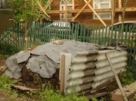 Акима сельского округа в Атырауской области Казахстана уволили и оштрафовали после того, как он попался на взятке навозом