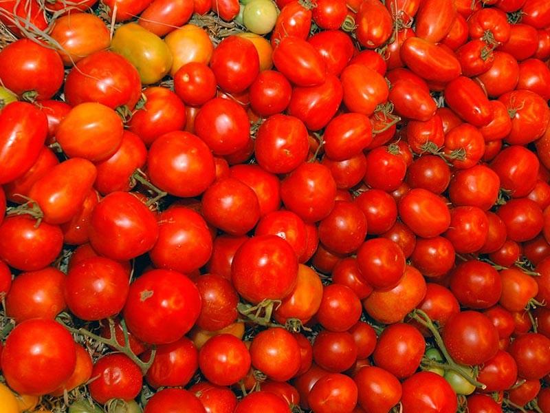 2 июня Россия отменила ряд ограничений на ввоз турецкой еды, однако запрета на ввоз томатов остался