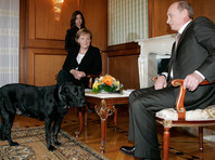 """В Focus объяснили непонятный русским смысл выражения """"собака-Путин"""". В Кремле журнал назвали """"русофобским"""""""