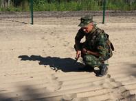 Белорусские пограничники выявили нарушителя границы: ушел в Литву на 2,5 метра за грибом