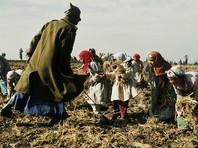 Доклад: более 40 миллионов человек в мире находятся в рабстве