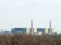 """В Венгрии на время строительства АЭС """"Пакш"""" кузнечиков и ящериц могут отселить в особую зону, а после вернуть обратно"""