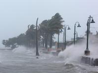 По данным Reuters, 10 человек погибших это данные по четырем островам