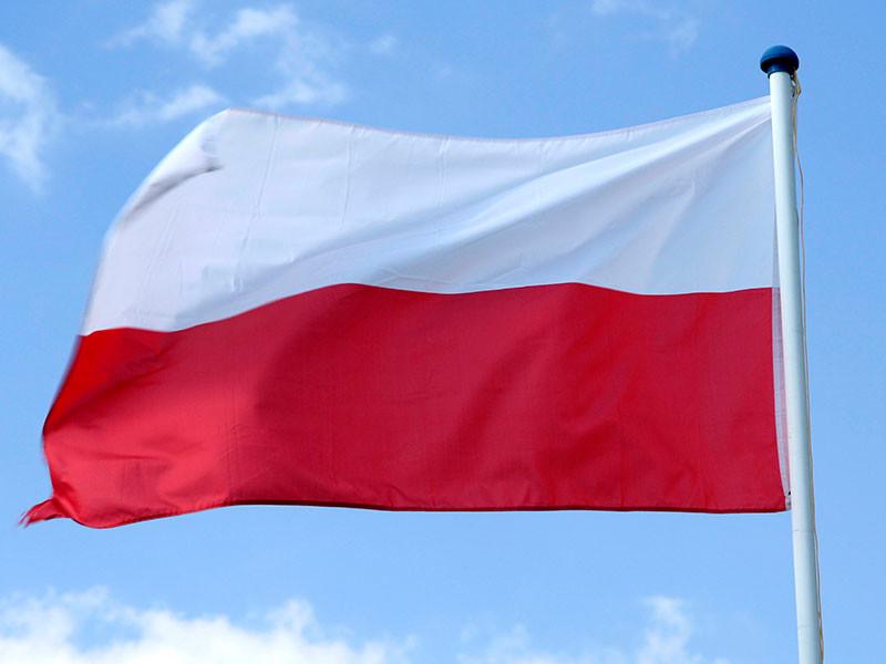 Правительство Польши намерено поспешить с требованиями репараций от России
