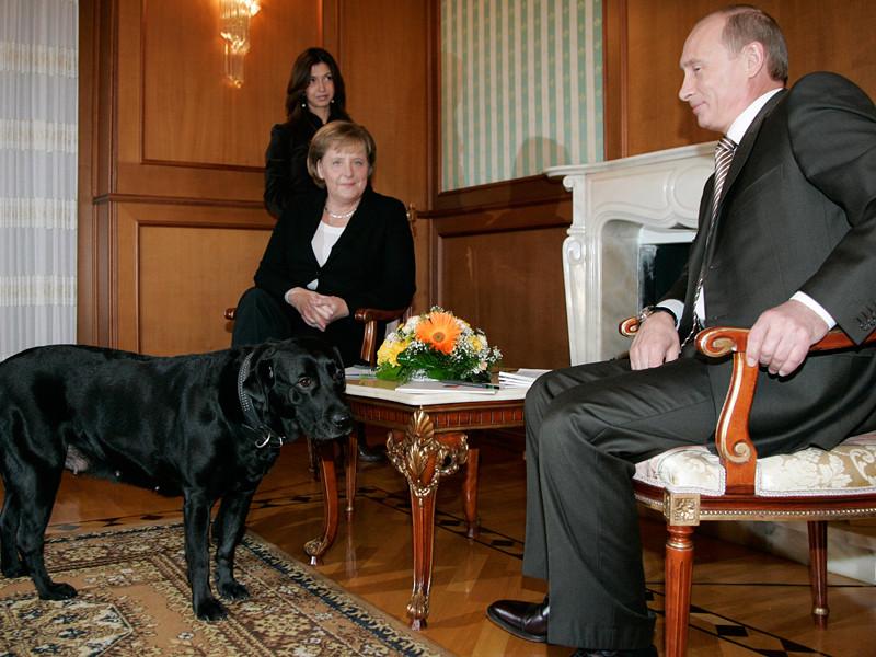 Речь идет о встрече 2007 года канцлера Меркель и Путина, когда путинский лабрадор Кони зашел в комнату, где шли переговоры, и канцлер испугалась собаки