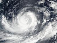 Два тропических шторма у берегов Америки набрали силу ураганов