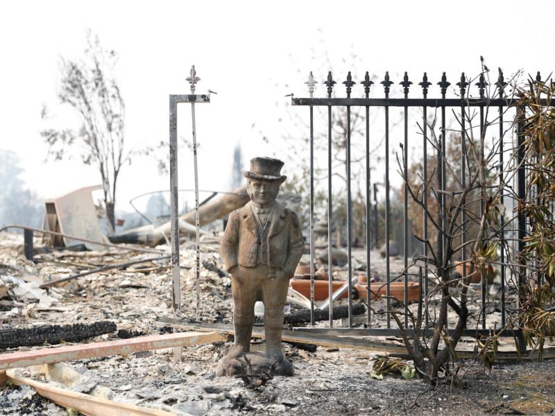 Число жертв пожаров в Калифорнии достигло 15, около 150 пропали без вести