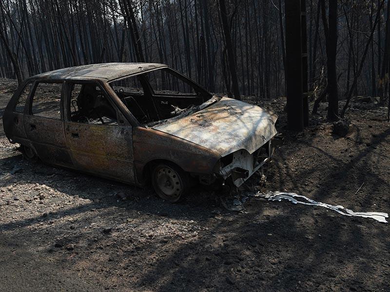 В Испании и Португалии  из-за сильных лесных пожаров погибли не менее 30 человек