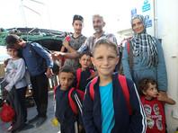В Италии учителя и парламентарии объявили голодовку, чтобы помочь детям иммигрантов
