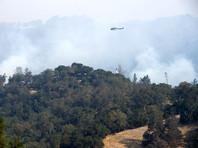 Число погибших в результате пожаров на севере Калифорнии увеличилось до 23