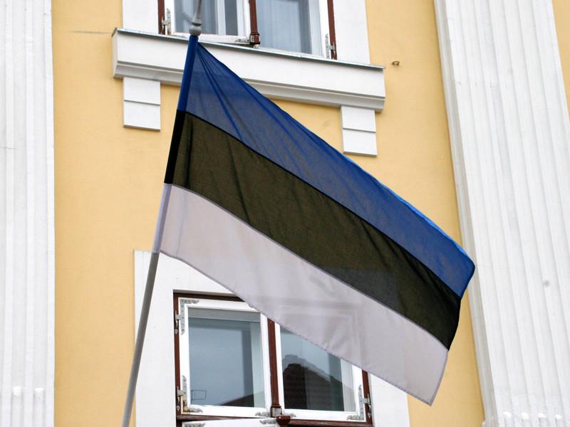 Россиянина арестовали в Эстонии по подозрению в подготовке киберпреступления